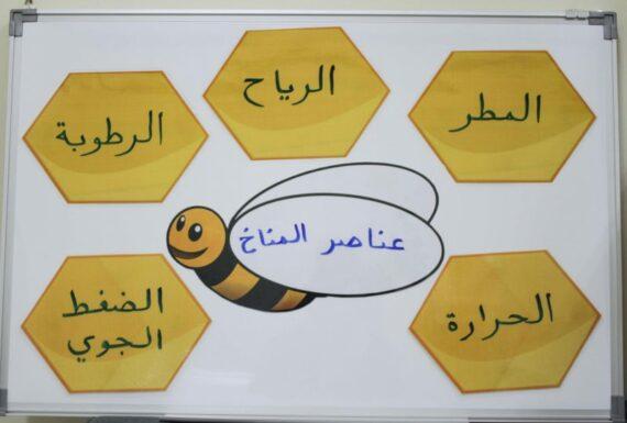 استراتيجية النحلة والخلية